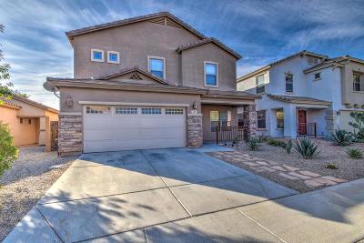 San Tan Valley Single Family Home For Sale: 143 W Desert Vista Trail