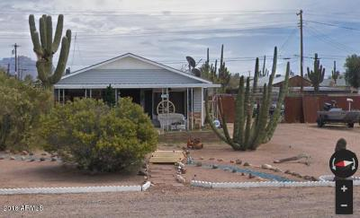Apache Junction Single Family Home For Sale: 231 S Mountain Road