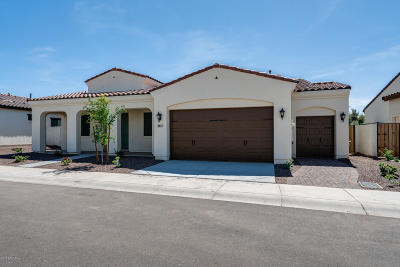 Litchfield Park AZ Single Family Home For Sale: $483,619