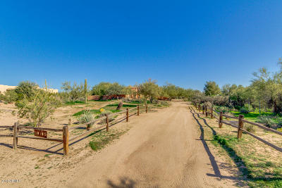 Cave Creek Single Family Home For Sale: 30105 N 64th Street