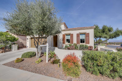 San Tan Valley Single Family Home For Sale: 1802 E Harmony Way