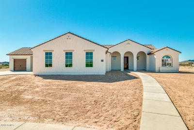 San Tan Valley Single Family Home For Sale: 434 W Haxtun Street