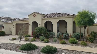 Mesa Single Family Home For Sale: 4710 S Centric Way