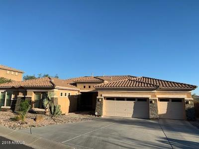 Phoenix Rental For Rent: 16033 S 29th Avenue