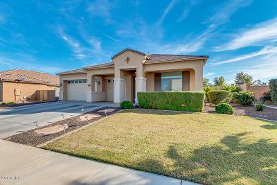 Maricopa Single Family Home For Sale: 20429 N Madeline Street