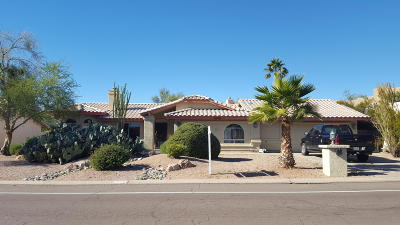 Fountain Hills Single Family Home For Sale: 16060 N Boulder Drive