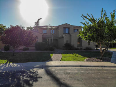 Gilbert Single Family Home For Sale: 6428 S Magic Court