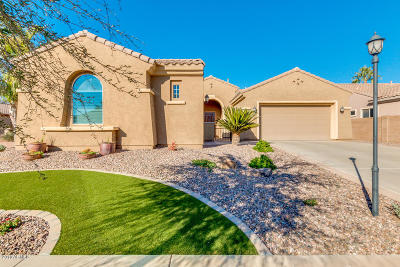 Chandler Single Family Home For Sale: 2048 E Powell Place