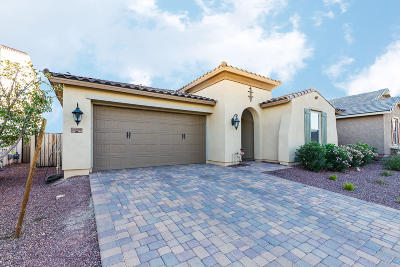 Buckeye Single Family Home For Sale: 20499 W Stone Hill Road