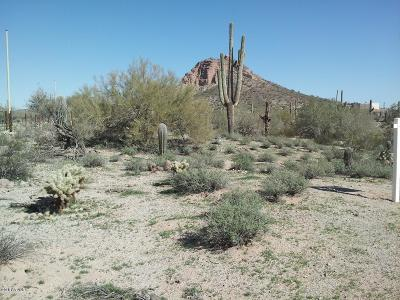 Queen Creek AZ Residential Lots & Land For Sale: $69,500