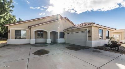 Buckeye Single Family Home For Sale: 10214 S 279 Avenue