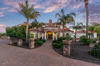Gilbert AZ Single Family Home For Sale: $1,249,999