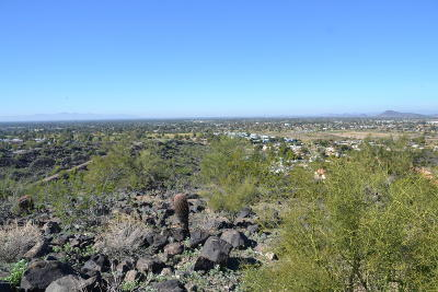 Phoenix Residential Lots & Land For Sale: 14210 N Moon Mountain Trail