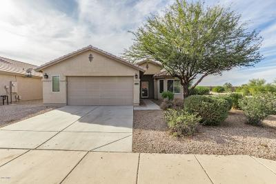 Casa Grande Single Family Home For Sale: 85 N Seville Lane
