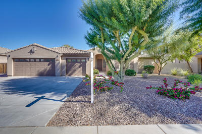 Goodyear Single Family Home For Sale: 2859 N 144th Drive