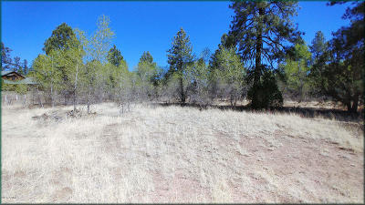 Overgaard AZ Residential Lots & Land For Sale: $39,000