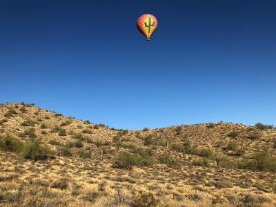 Phoenix Residential Lots & Land For Sale: 33xxx N 7th Street