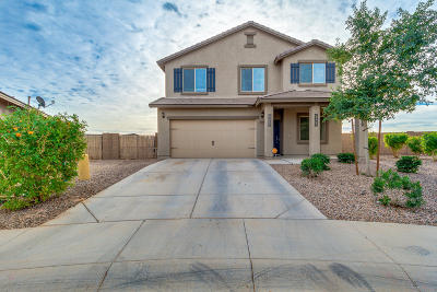 Maricopa Single Family Home For Sale: 20309 N Mac Neil Street