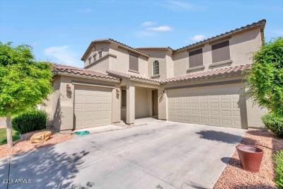 Maricopa Single Family Home For Sale: 42548 W Cheyenne Drive