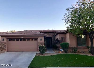 Avondale Single Family Home For Sale: 11021 W Washington Street