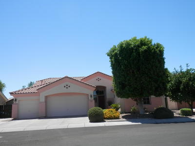 Chandler Single Family Home For Sale: 750 N Tower Place