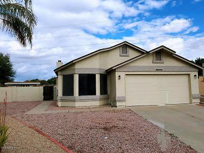 Phoenix Single Family Home For Sale: 19049 N 31st Place
