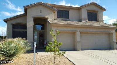 Anthem Single Family Home For Sale: 40031 N Curie Court