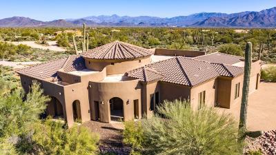 Single Family Home For Sale: 16738 E Lone Mountain Road