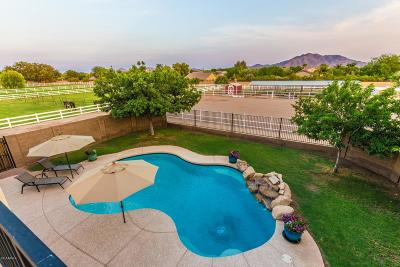 Gilbert Single Family Home For Sale: 6179 S 172nd Street
