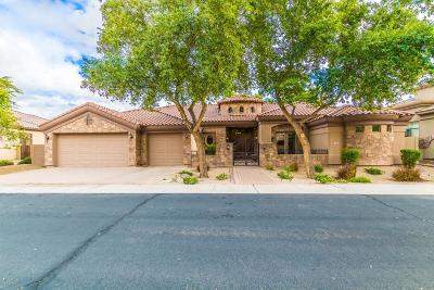Chandler Single Family Home For Sale: 1701 S Jay Place