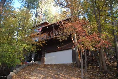 Payson Single Family Home For Sale: 295 S Ford Lane