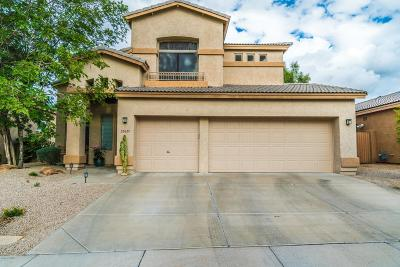 Cave Creek Single Family Home For Sale: 29657 N 48th Place