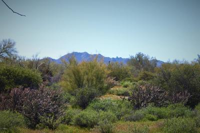 Rio Verde Residential Lots & Land For Sale: 17400 E Quail Track Lot G Road