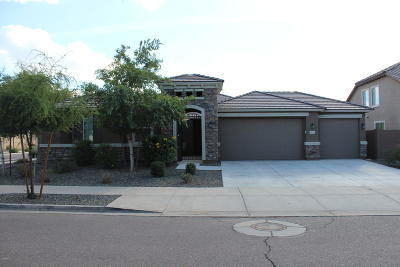 Laveen Single Family Home For Sale: 5611 W Beth Drive