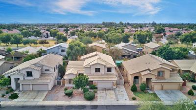 Chandler Single Family Home For Sale: 731 W Indigo Drive