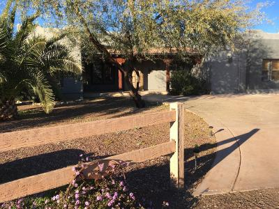 Wittmann Single Family Home For Sale: 21028 W Morning Vista Drive