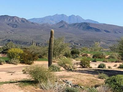 Rio Verde Residential Lots & Land For Sale: 17536 E Brushy Mountain Court
