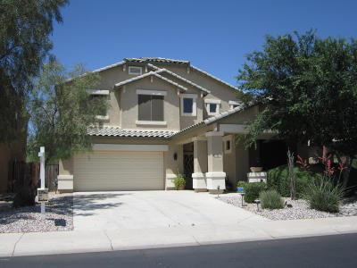 Maricopa Single Family Home For Sale: 22202 N Dietz Drive