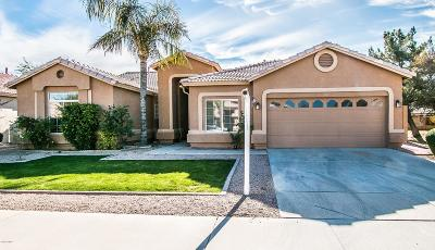 Tempe Single Family Home UCB (Under Contract-Backups): 287 W Buena Vista Drive