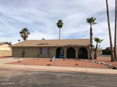 Tempe Single Family Home For Sale: 4623 S Hazelton Lane