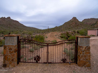 Apache Junction Residential Lots & Land For Sale: N Idaho Road