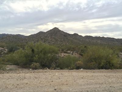 La Paz County Residential Lots & Land For Sale: 26500 N Alamo Road