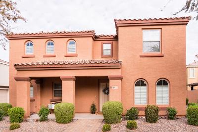 Gilbert Single Family Home For Sale: 2564 E Megan Street