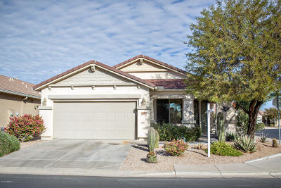 San Tan Valley Single Family Home For Sale: 196 W Twin Peaks Parkway