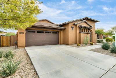 Goodyear Single Family Home For Sale: 18161 W Gold Poppy Way