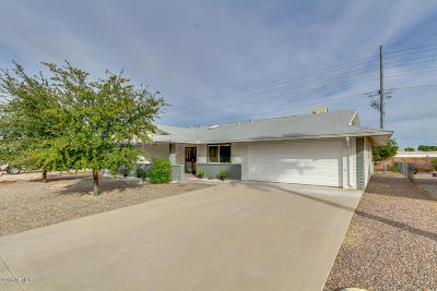 Sun City Single Family Home For Sale: 10015 N Balboa Drive