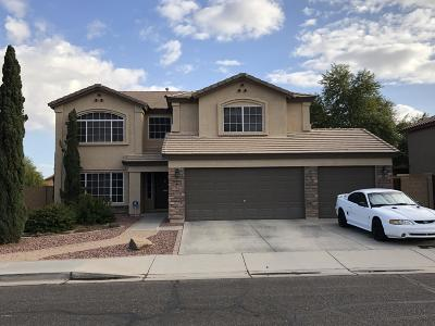 San Tan Valley Single Family Home For Sale: 31535 N Blackfoot Drive