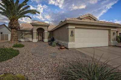 Goodyear Single Family Home For Sale: 15788 W Vale Drive