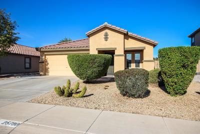 Buckeye Single Family Home For Sale: 25780 W Nancy Lane