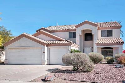 Chandler Single Family Home For Sale: 1481 S Karen Drive